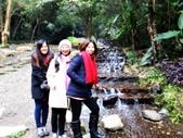 春の紅葉---惠蓀林場:涉水步道