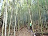 水社大山:DSC00127.JPG