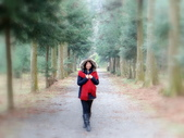 春の紅葉---惠蓀林場:DSC01961.JPG
