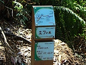 水社大山:DSC00132.JPG