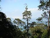 水社大山:DSC00142.JPG