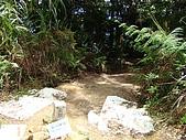 金柑樹山:金柑樹山(三角點)