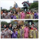20130409 紙風車台灣動物昆蟲創意展:201304-5.jpg