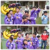 20130409 紙風車台灣動物昆蟲創意展:201304-6.jpg