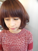 2016髮型甜點染髮色彩:玫瑰櫻桃馬卡龍:2016髮型甜點染髮色彩:玫瑰櫻桃馬卡龍