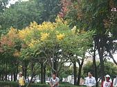 98.10.04中福杯全國肢障槌球賽:DSC09224.JPG