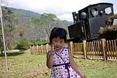 太平山之土場及傳統藝術中心:IMGP2299