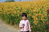 赤科山的金針花:IMGP5283.jpg