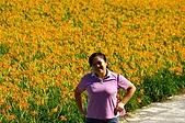 赤科山的金針花:IMGP5338.jpg