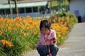 赤科山的金針花:IMGP5308.jpg