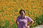 赤科山的金針花:IMGP5339.jpg