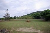 墾丁原始林露營區:IMGP7634.JPG