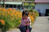 赤科山的金針花:IMGP5309.jpg