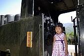 太平山之土場及傳統藝術中心:IMGP2308