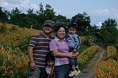 赤科山的金針花:IMGP5376.jpg
