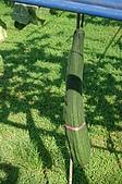赤科山的金針花:IMGP5259.jpg