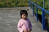 赤科山的金針花:IMGP5261.jpg