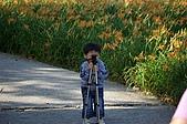 赤科山的金針花:IMGP5345.jpg