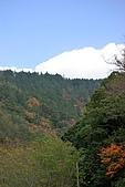 合歡山賞雪:IMGP6946.jpg