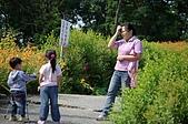 赤科山的金針花:IMGP5381.jpg