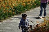 赤科山的金針花:IMGP5329.jpg