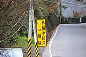 合歡山賞雪:IMGP6950.jpg