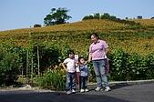 赤科山的金針花:IMGP5382.jpg
