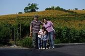 赤科山的金針花:IMGP5383.jpg