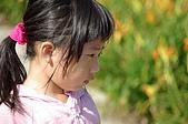 赤科山的金針花:IMGP5349.jpg