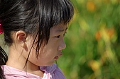 赤科山的金針花:IMGP5350.jpg