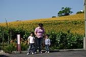 赤科山的金針花:IMGP5384.jpg