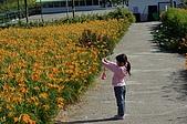 赤科山的金針花:IMGP5296.jpg