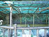 廬山溫泉:DSCN0879.JPG