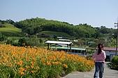 赤科山的金針花:IMGP5314.jpg