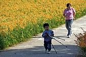赤科山的金針花:IMGP5331.jpg