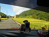 花蓮賞金針花三日遊:DSCN0412.jpg