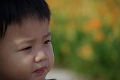 赤科山的金針花:IMGP5358.jpg