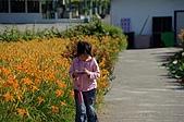 赤科山的金針花:IMGP5299.jpg