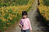 赤科山的金針花:IMGP5275.jpg