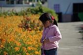赤科山的金針花:IMGP5300.jpg