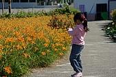 赤科山的金針花:IMGP5301.jpg