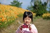 赤科山的金針花:IMGP5278.jpg
