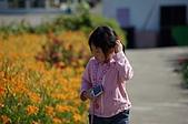 赤科山的金針花:IMGP5302.jpg