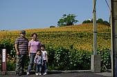 赤科山的金針花:IMGP5390.jpg