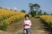 赤科山的金針花:IMGP5280.jpg