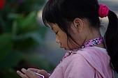赤科山的金針花:IMGP5321.jpg