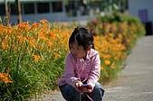 赤科山的金針花:IMGP5305.jpg