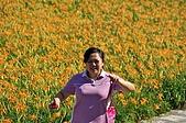 赤科山的金針花:IMGP5337.jpg
