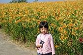 赤科山的金針花:IMGP5282.jpg
