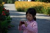 赤科山的金針花:IMGP5323.jpg